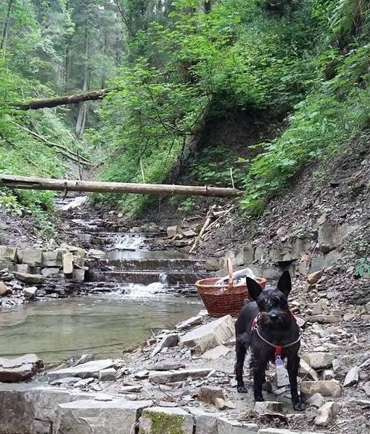 Czarny piesek, wiklinowy koszyk, górski potok. Cisza spokój i majestat