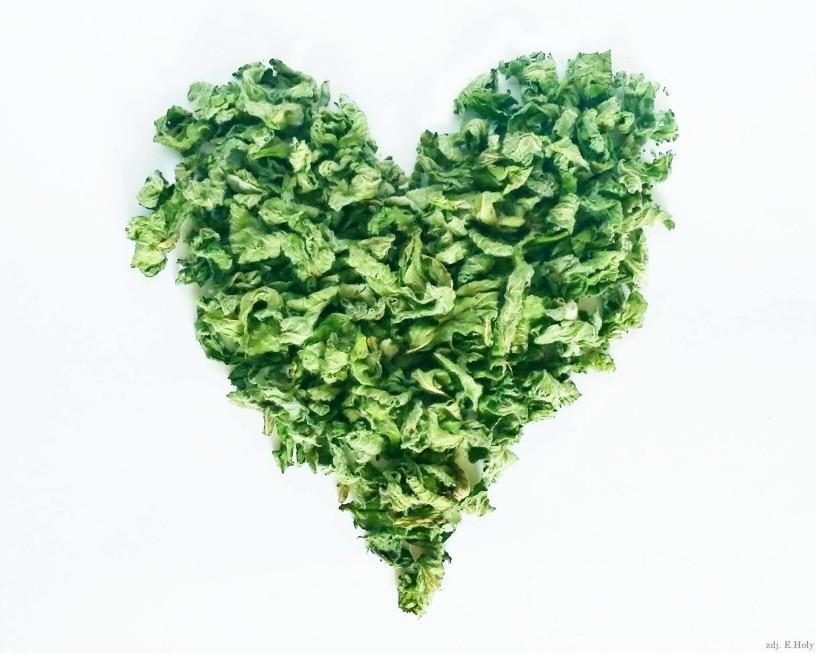 Serduszko z suszonych liści mięty - piękne i zdrowe