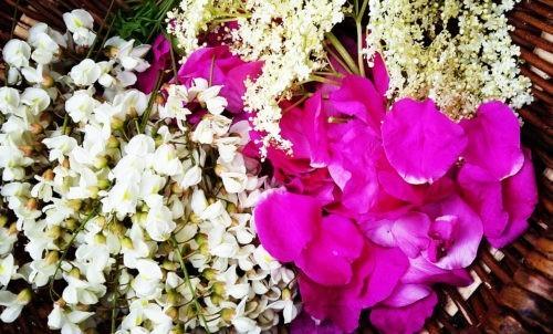Jadalne kwiaty